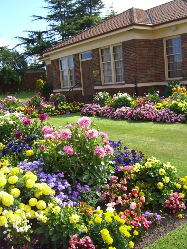 ニュージーランドの庭園 ガーデニング