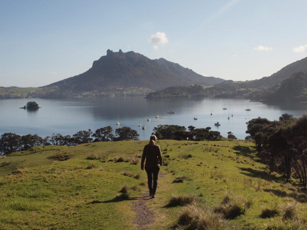 【ファンガレイでトレッキング】 ビーチ、牧草地、マオリの遺跡を歩く、ファンガレイヘッド
