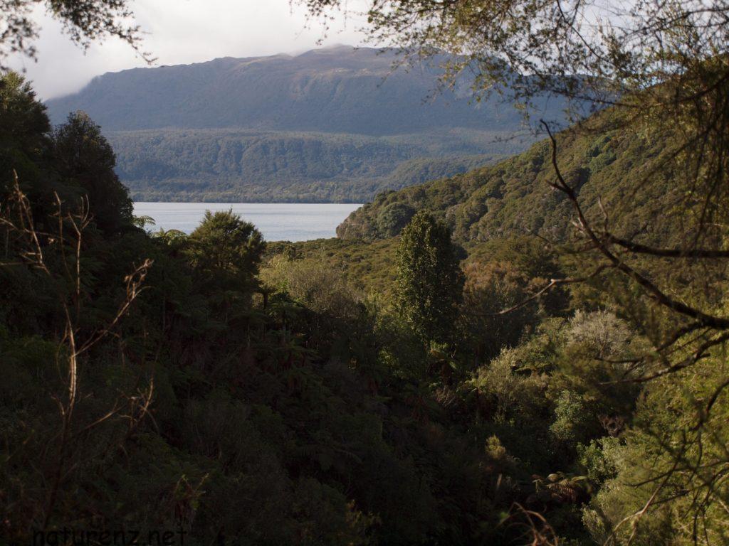 ロトルア タワウェラ湖 tarawera lake