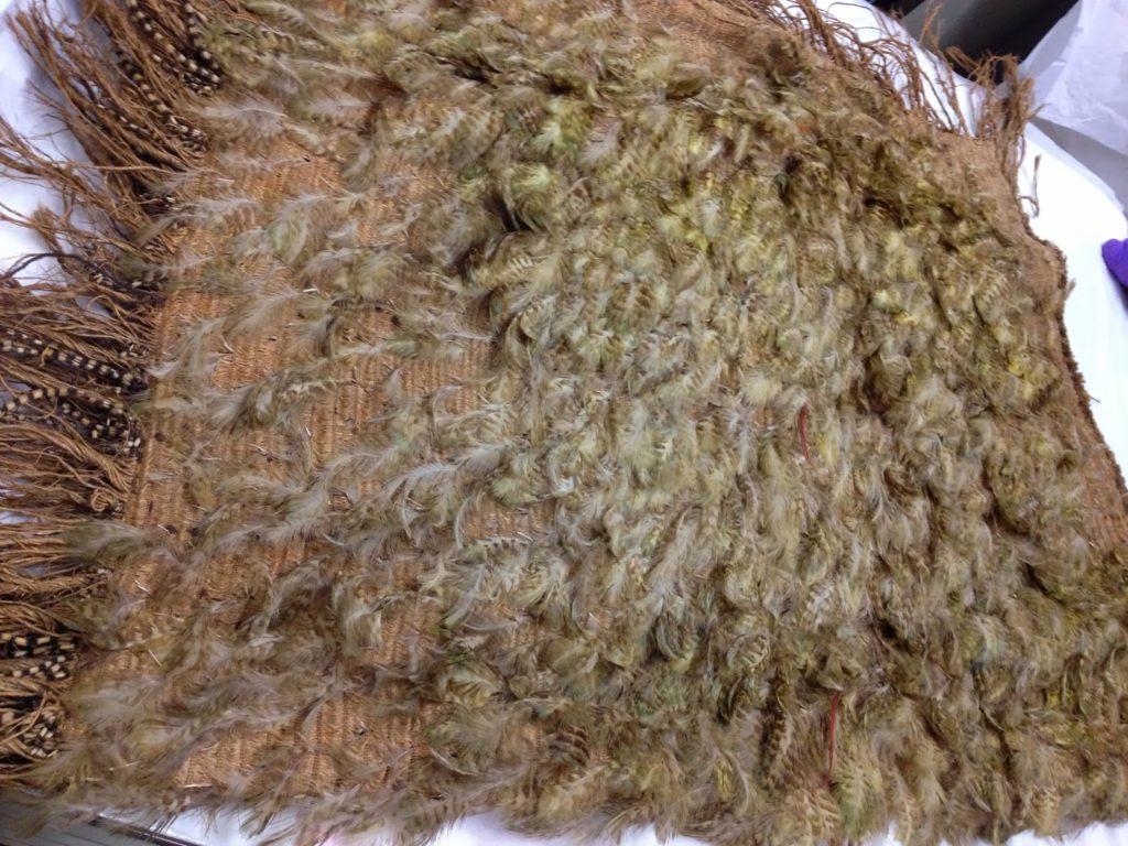 kakapo-cloak