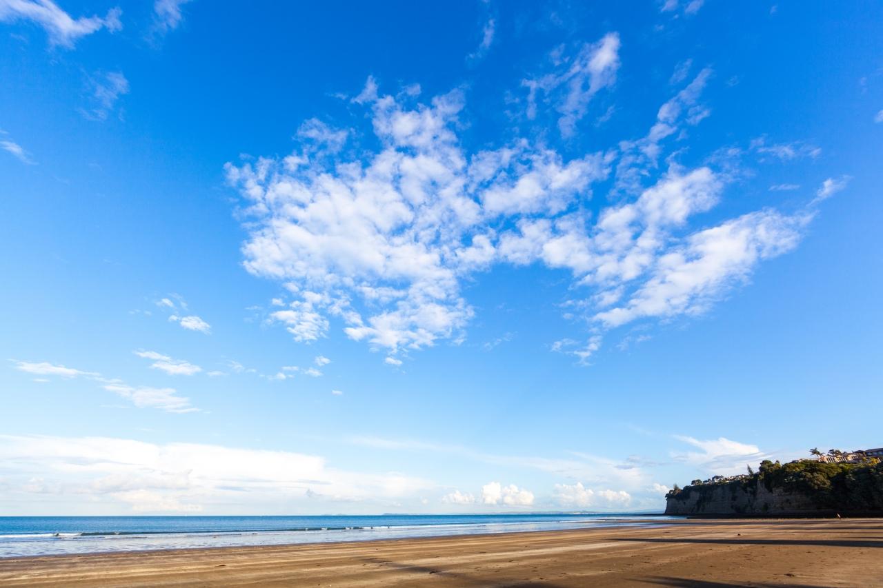 【オークランドでトレッキング】 ヌーディストビーチに気をつけろ!ロングベイ自然公園