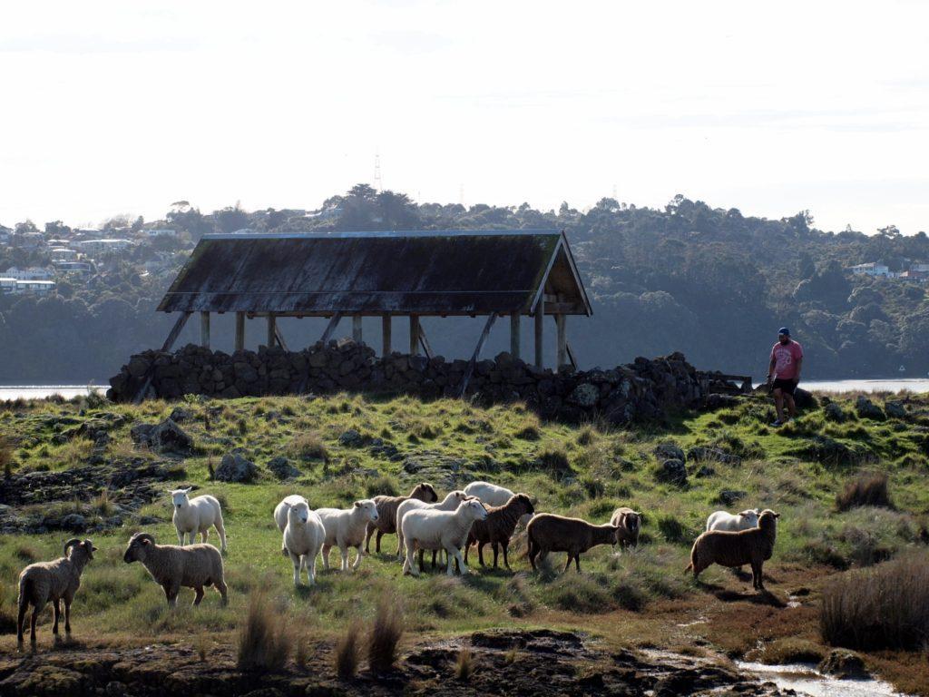 アンバリーregional park