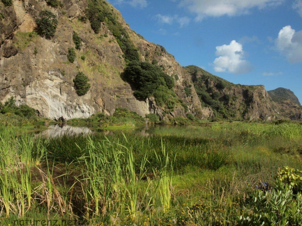 カレカレビーチ カレカレ トレッキング ハイキング オークランド キャンプ テント