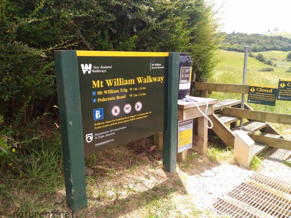 Mt.william walkway ポケノ pokeno trekking