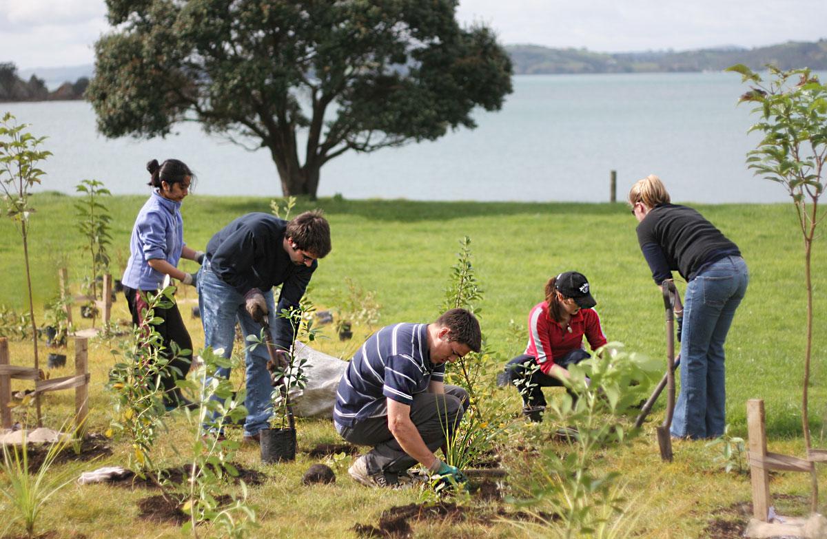 ランギトト島の隣の島、モトゥタプ島で植林活動に参加しよう!