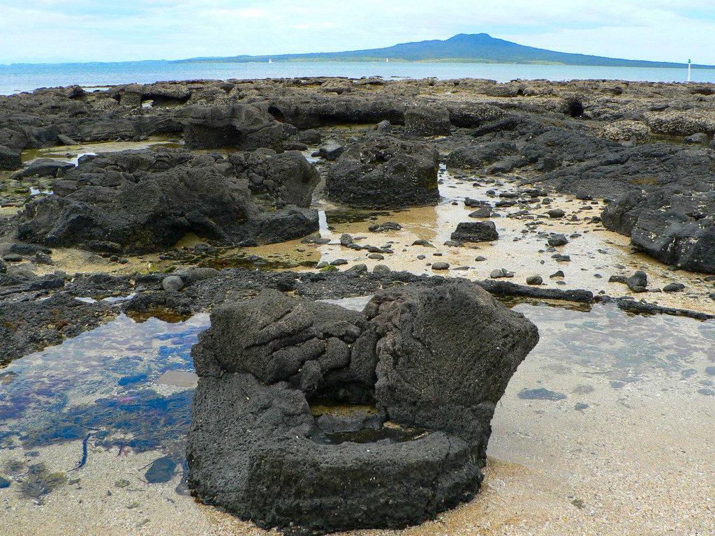 タカプナビーチの化石の森1
