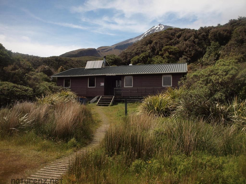 ニュージーランドの山小屋(ハット)。エグモント国立公園のサービスド・ハット