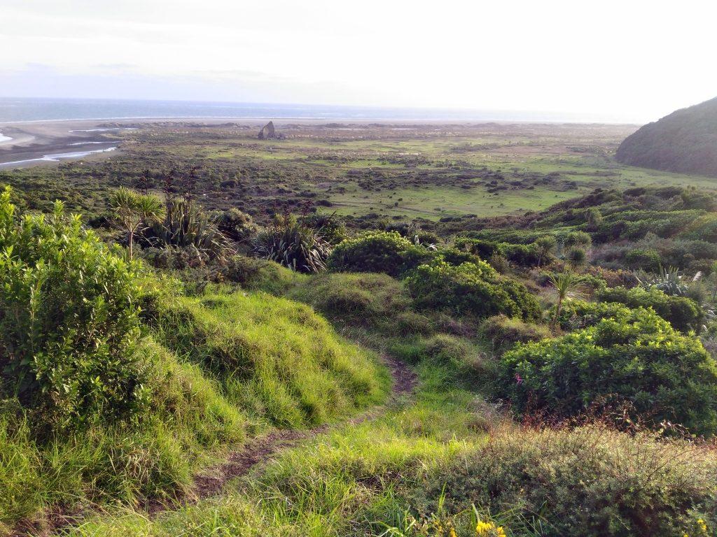 ワティプのトレッキングコース序盤。低木や草の茂みを登る。奥にタスマン海
