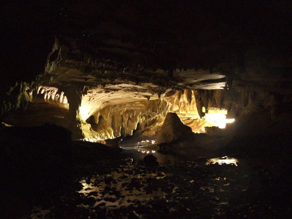 P3262450 waipu cave ワイプ 土ボタル グロウワーム 洞窟