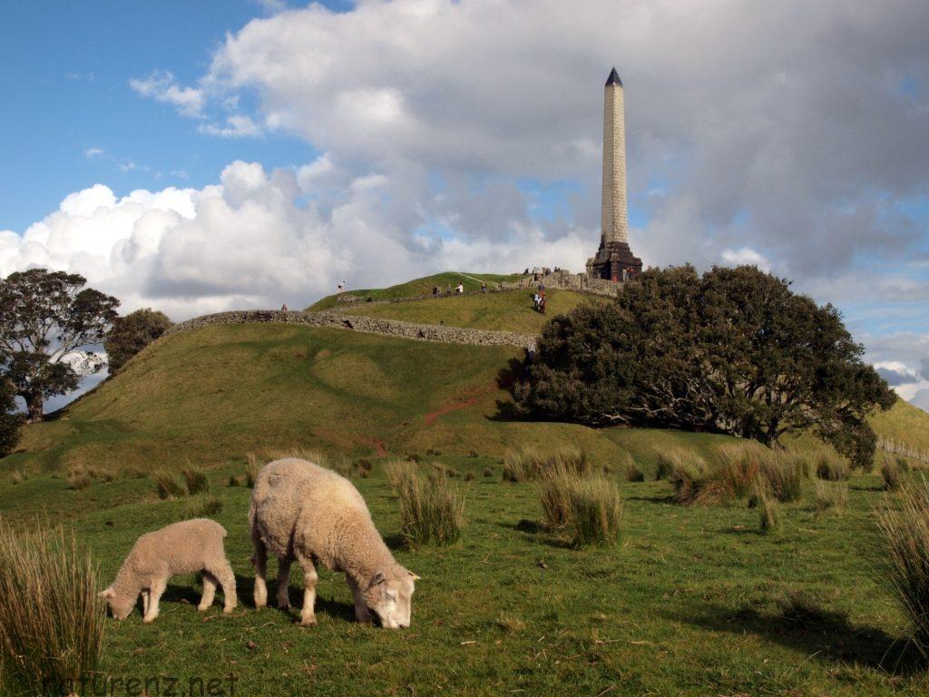 羊と記念撮影もできる!?ワンツリーヒルで見どころ満載のトレッキング!
