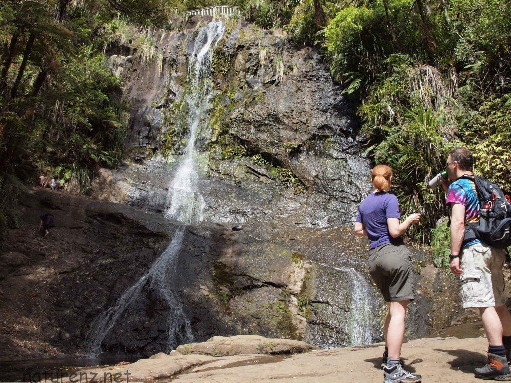 オークランドの大滝を見に行こう!ワイタケレの「フェアリー・フォールス」へ
