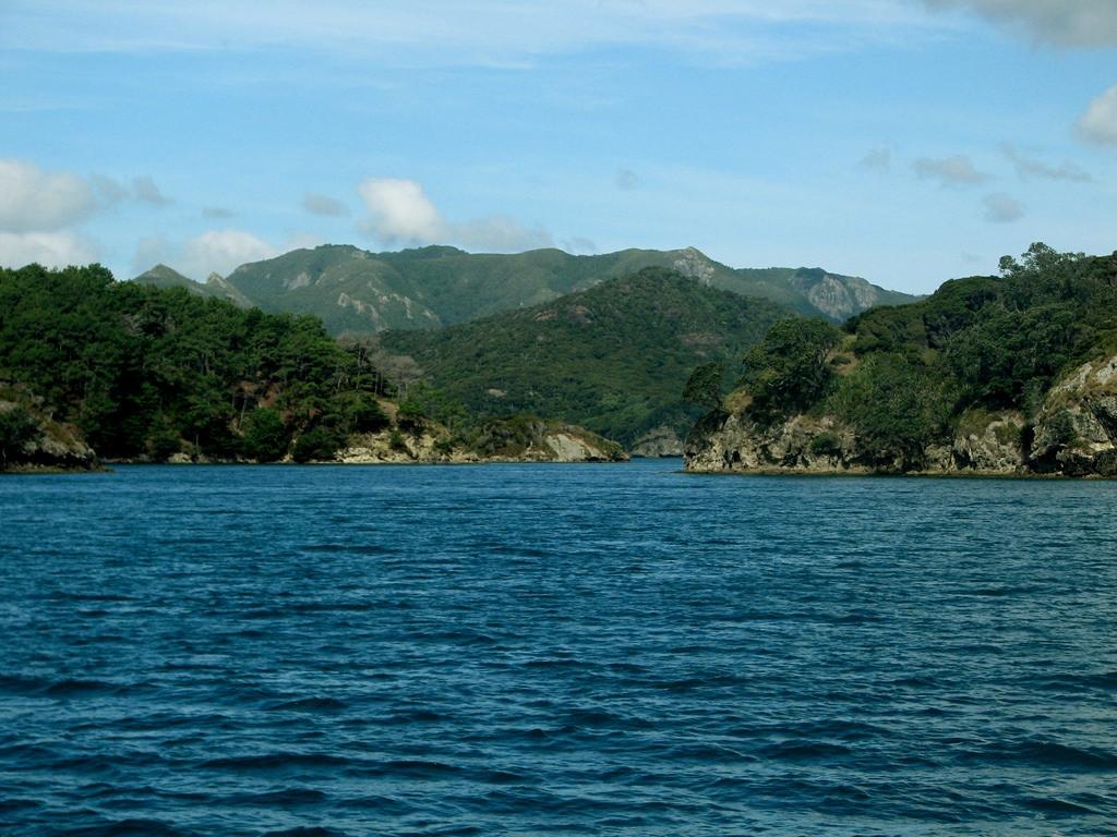 グレートバリア島 photo by Flicker