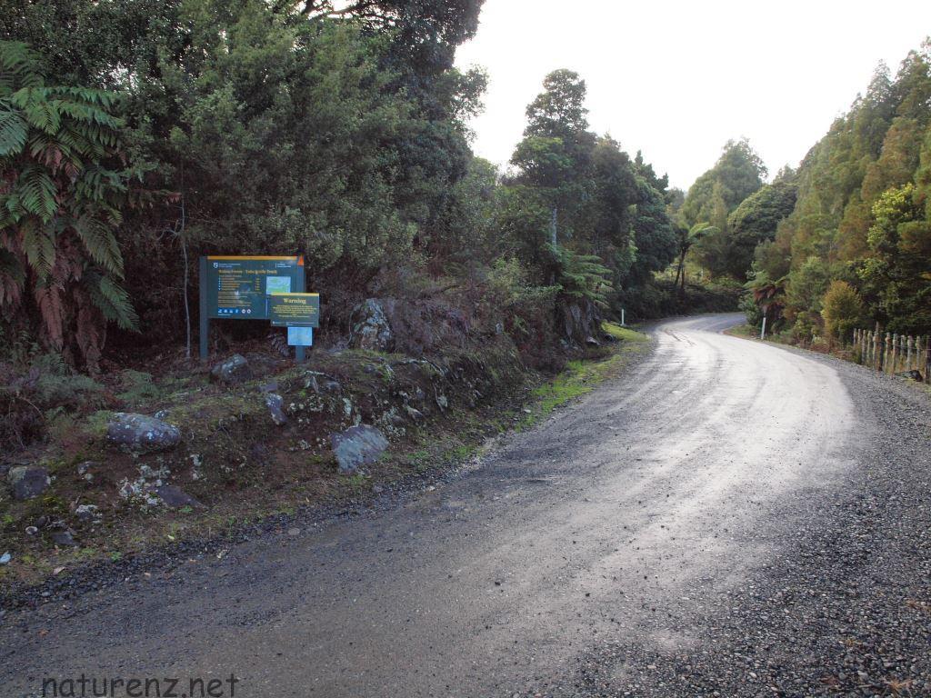 waima forestのノースランド最高峰を目指す。未舗装の道沿いに、小さな看板。
