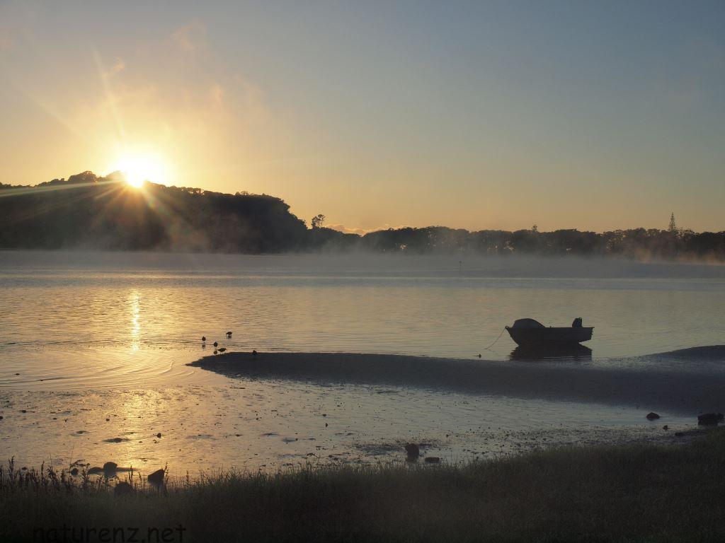 オークランドの冬の寒い朝・・