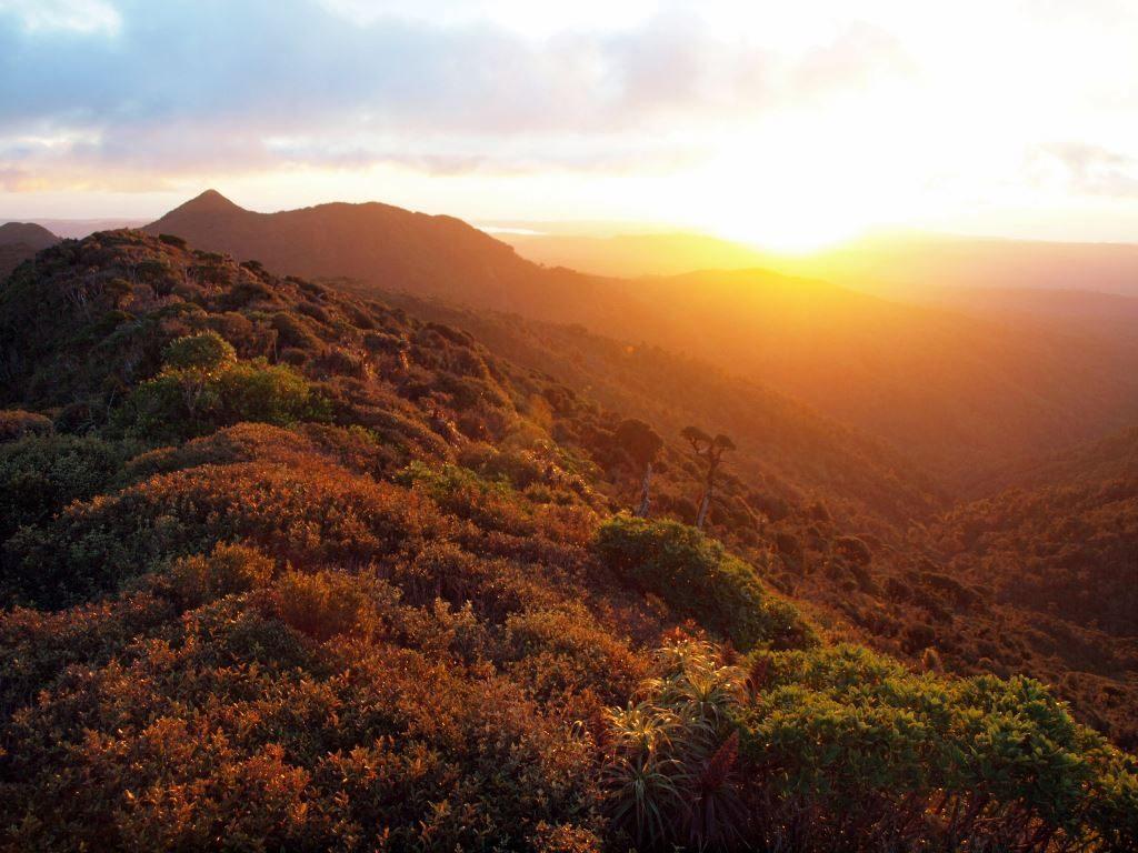 NZ北島で山小屋一泊のトレッキング!ワイカト最高峰「マウント・ピロンギア」