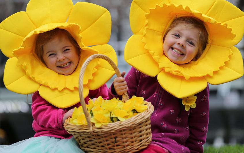NZ最大級のチャリティーイベント。毎年8月の「ラッパ水仙の日 (Daffodil Day)」って何の日?