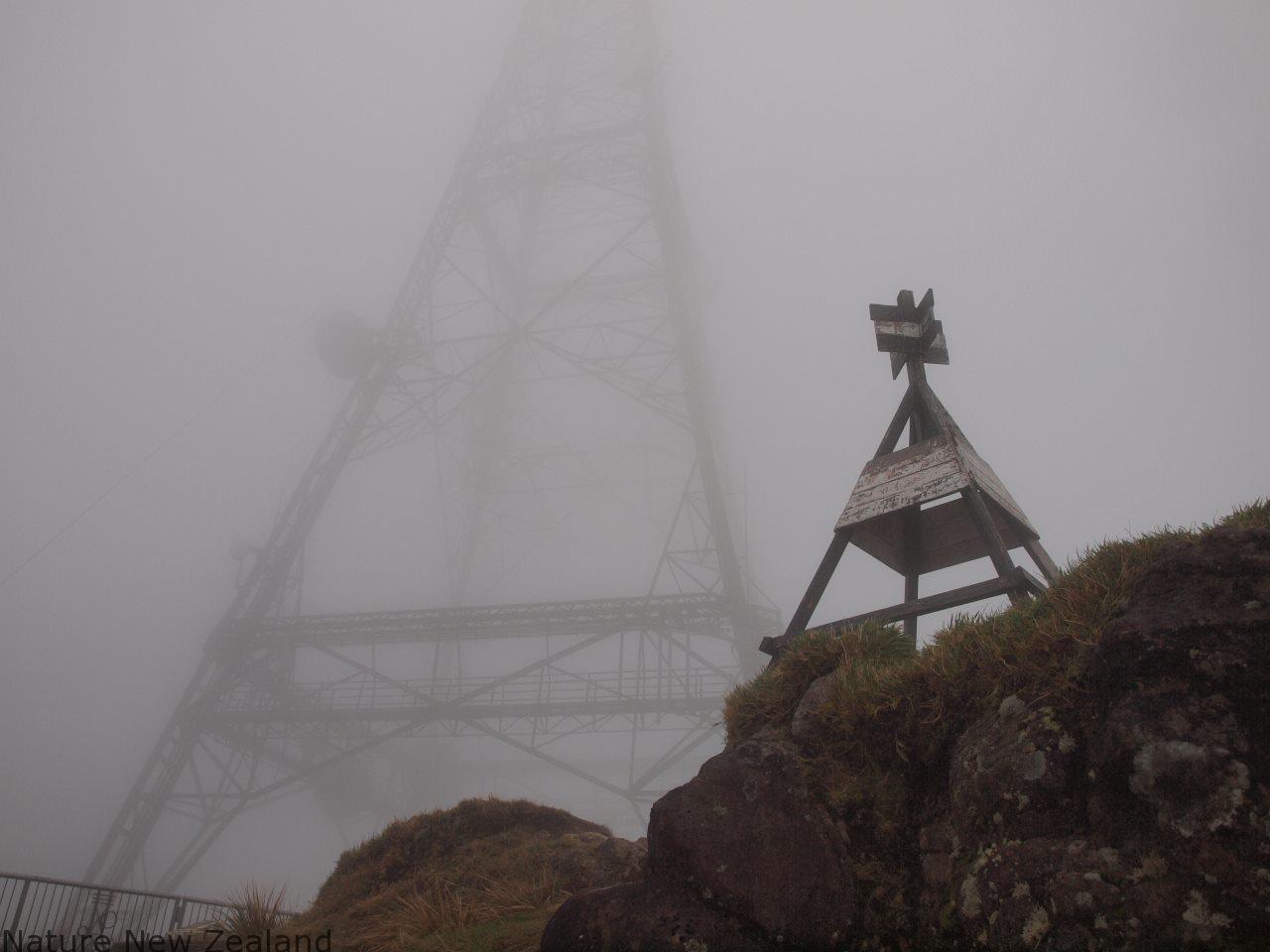 テ・アロハ頂上。電波塔がある。残念だけど、絶景は見られず・・