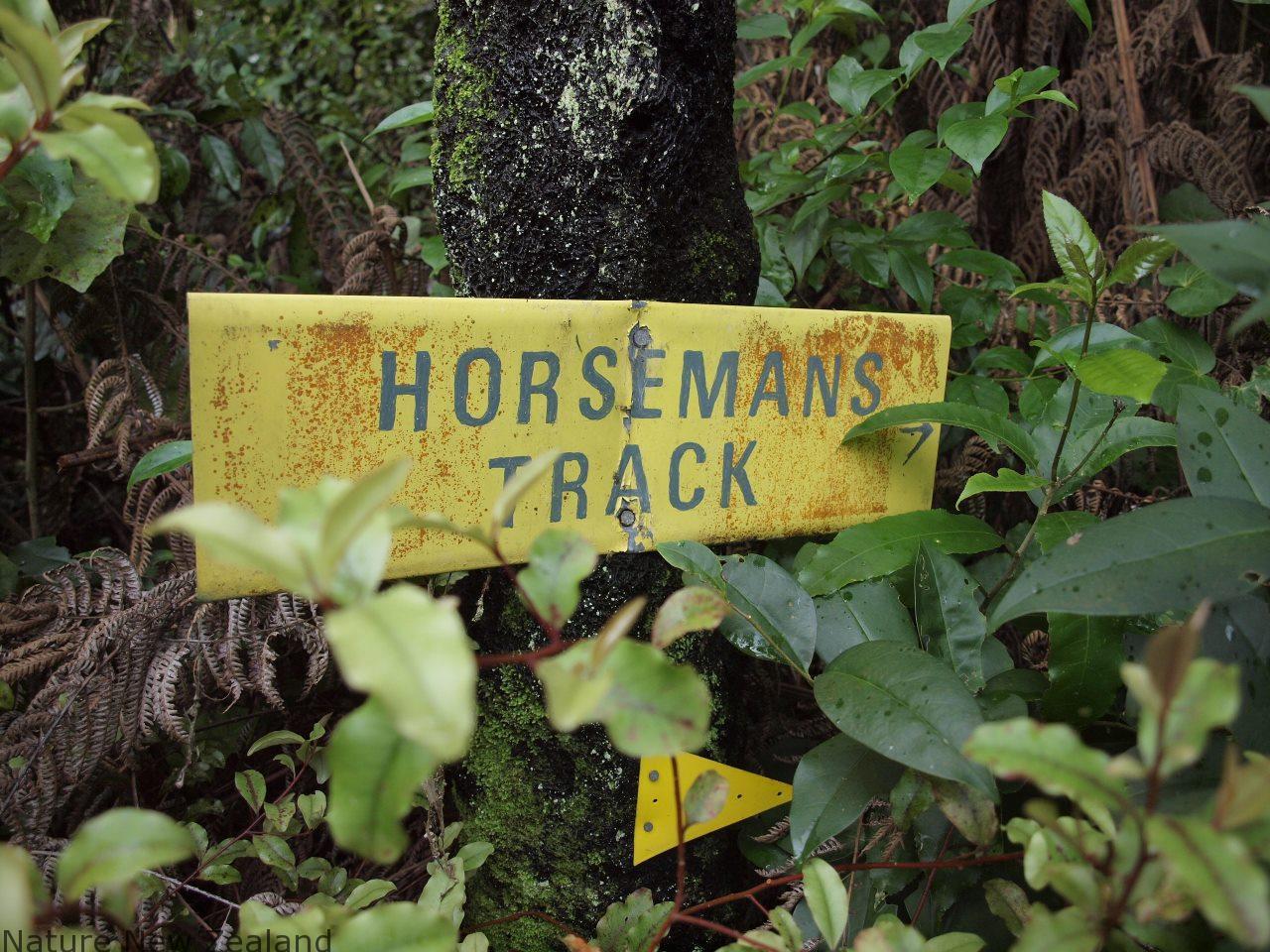 下山の代替ルート、ホースマンズ・トラック