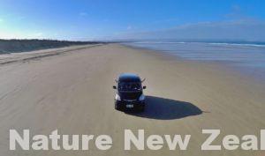 実証!砂浜の高速道路・90マイルビーチは普通車で走れるのか?!