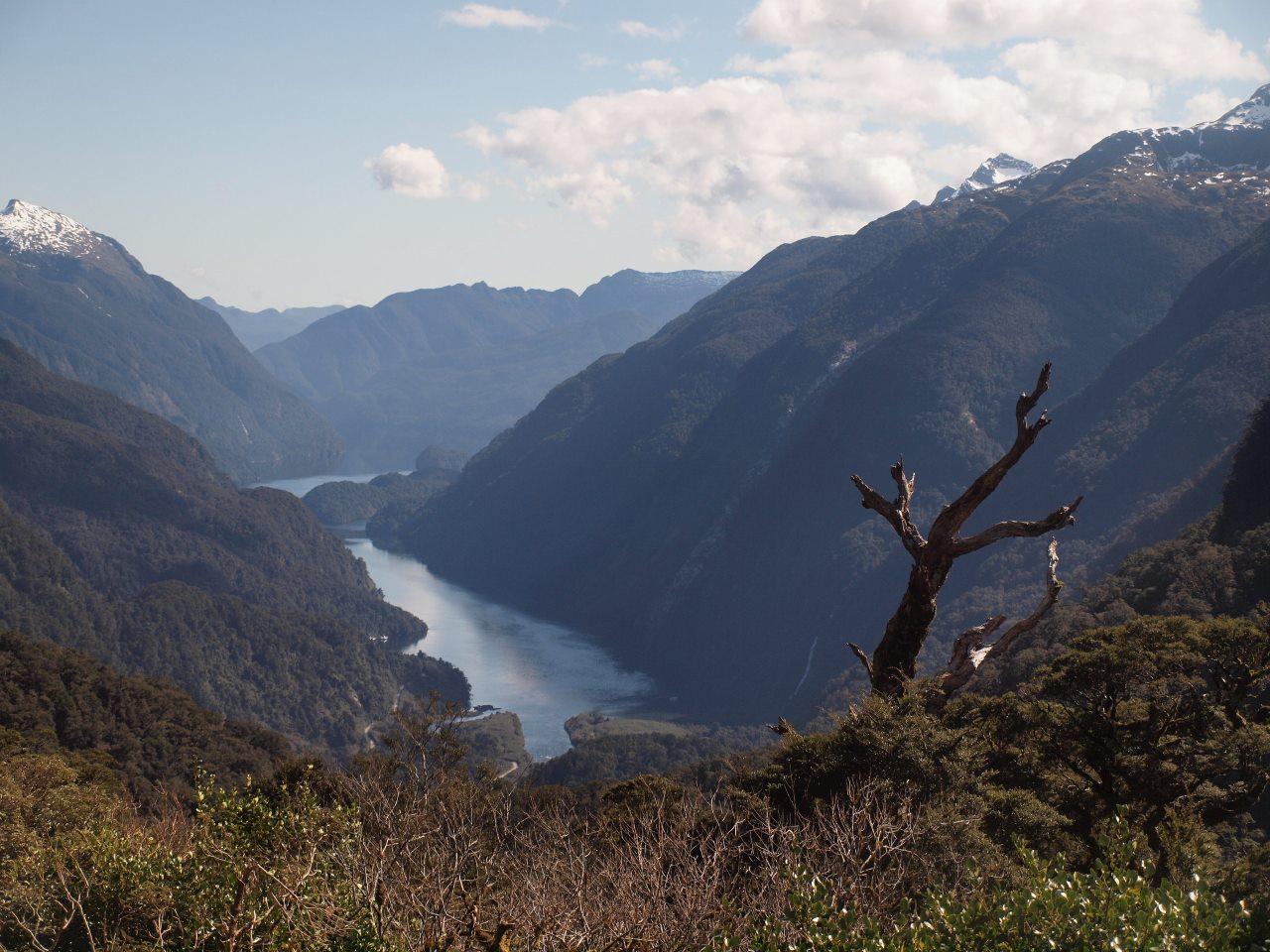 マナポウリ湖をクルーズし、山道を走って、ようやく眼下に目的地のダウトフルサウンドが見えてきた。