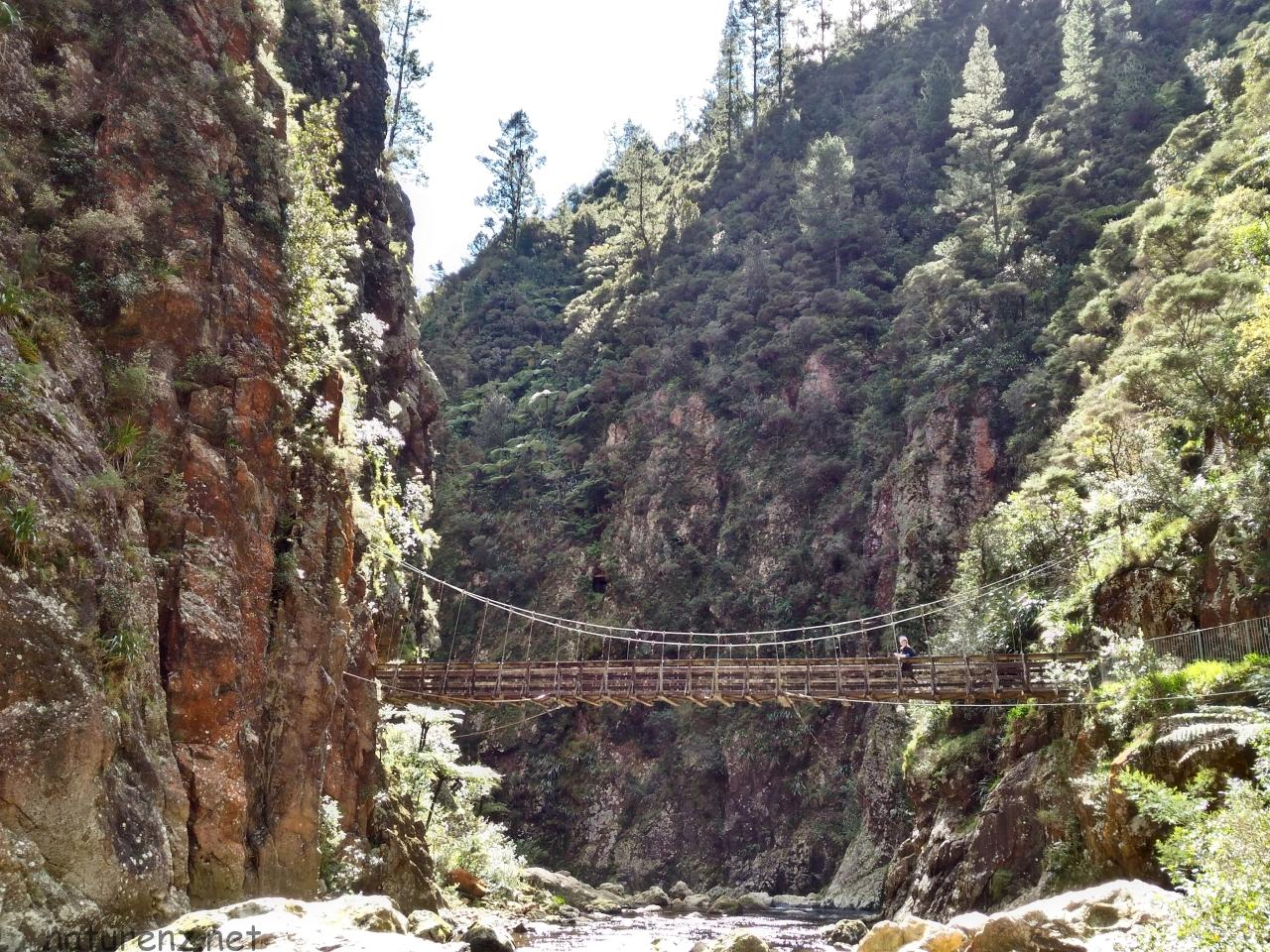 Karangahake Gorge bridge