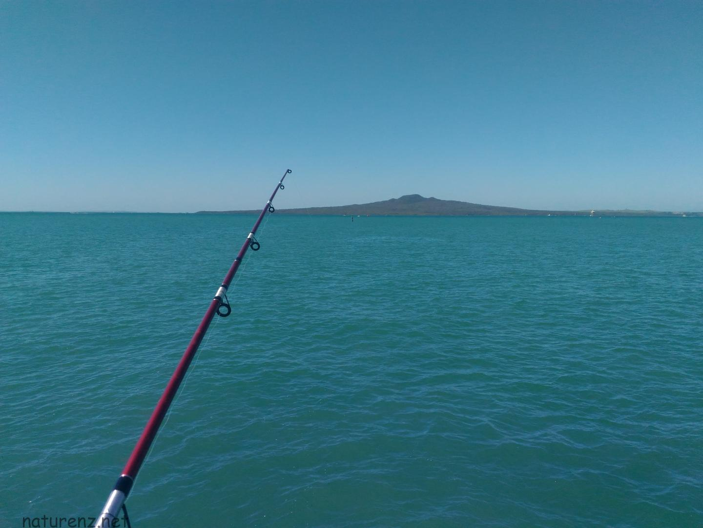 fishing orakei 水族館 釣り