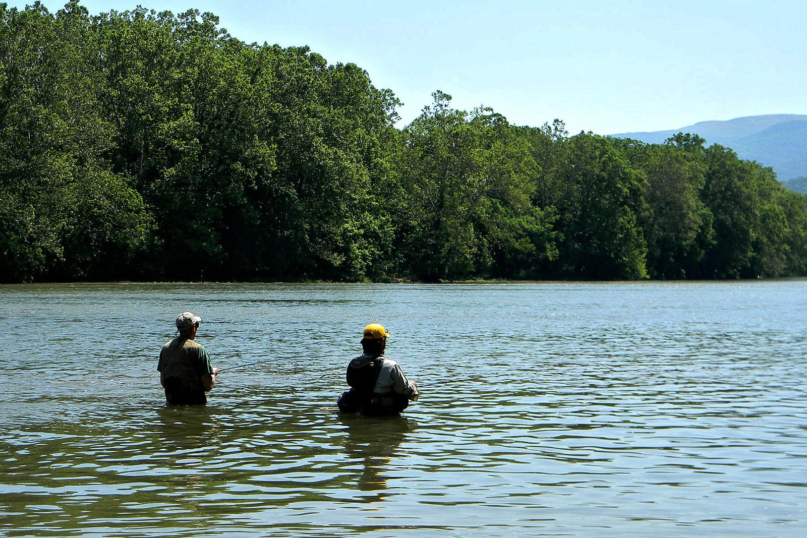 【川の水質汚染】 NZの川の50%が基準値超との調査結果。汚染の原因は!?