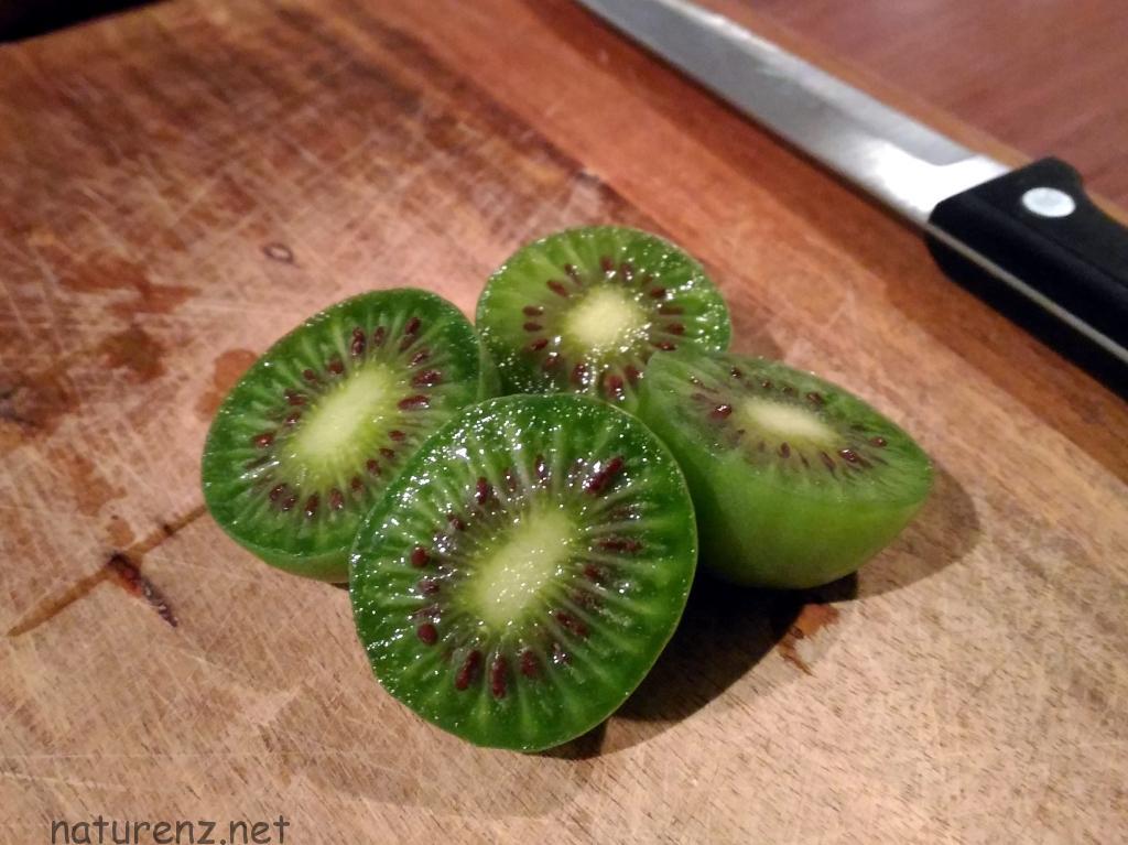 NZの新たな名産品!?『キーウィベリー』ってどんなフルーツ?