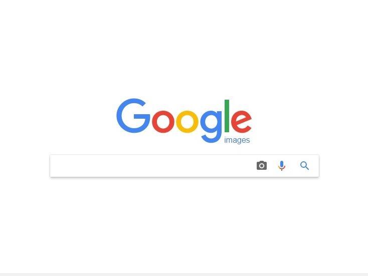 野鳥やお花の判別に超便利!googleの「画像で画像検索」を使いこなそう