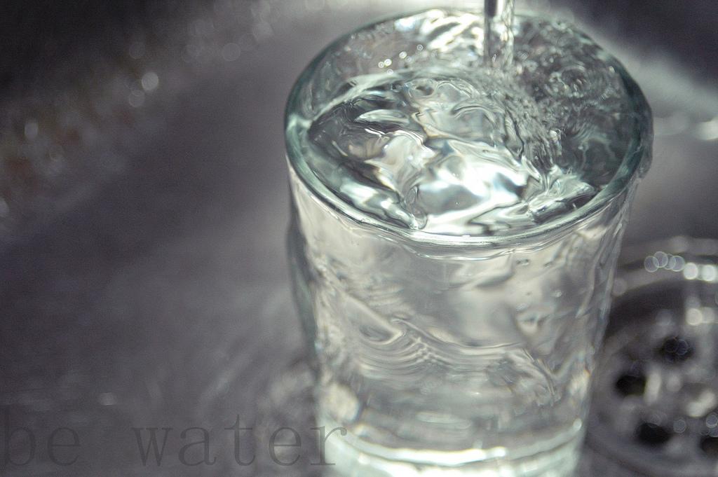 軟水と硬水はどう違う?ニュージーランドの湧水の川から、水を読み解く。